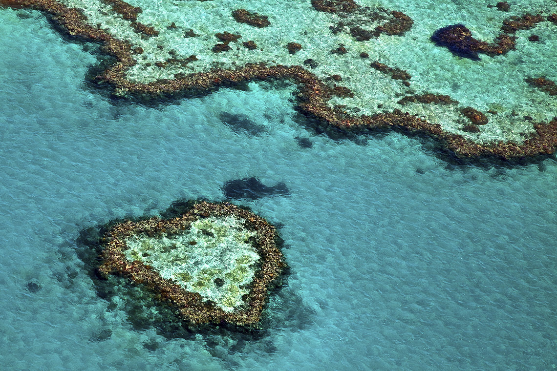 Das Heart-Reef im Great Barrier Reef