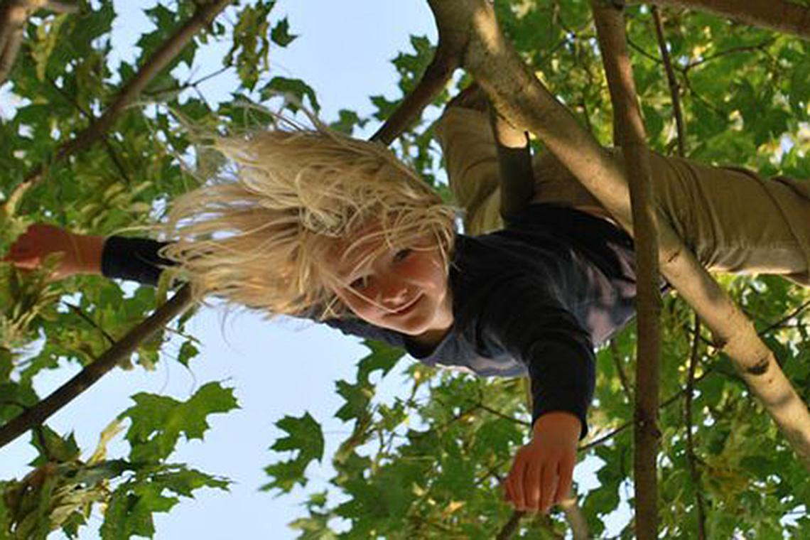 Natur ist spannend für Kinder: Kind klettert auf Baum. Was man sonst noch in der Natur machenh kann erfährt man im WWF Handbuch.