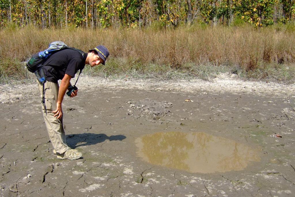 Ein halbes Jahr lang habe ich Wasserlöcher in Kambodschas Trockenwäldern untersucht. © WWF