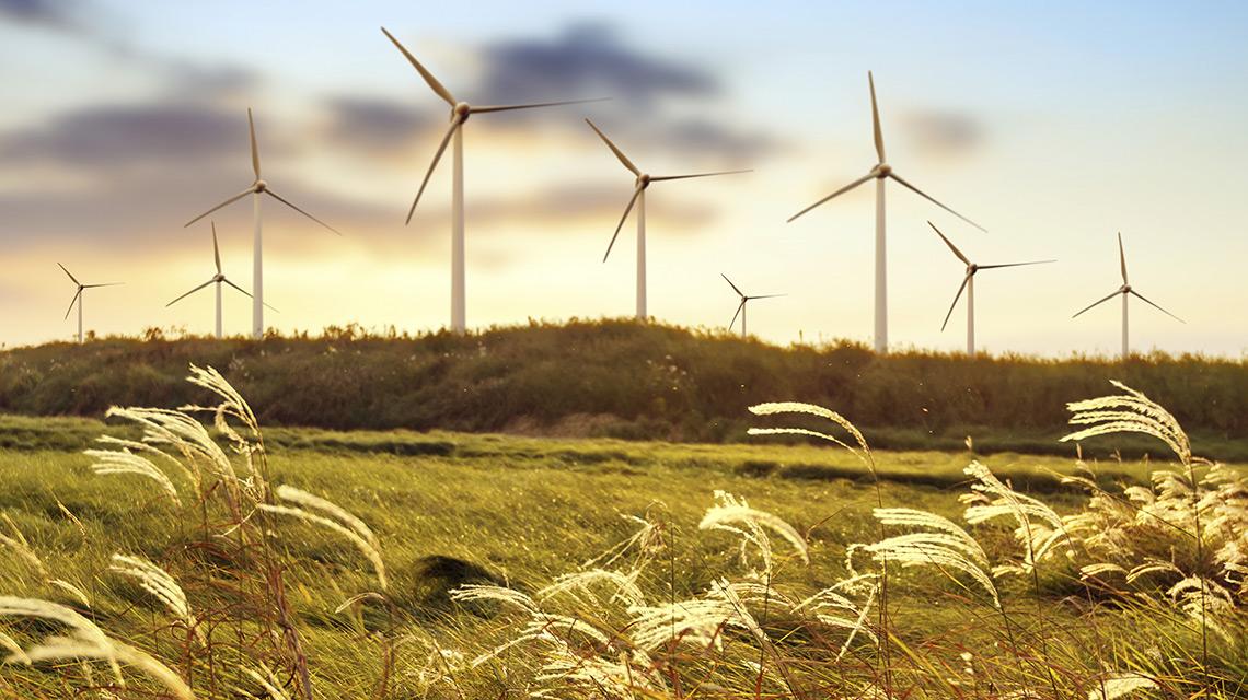 Windräder: Die Energiezukunft hat schon begonnen.