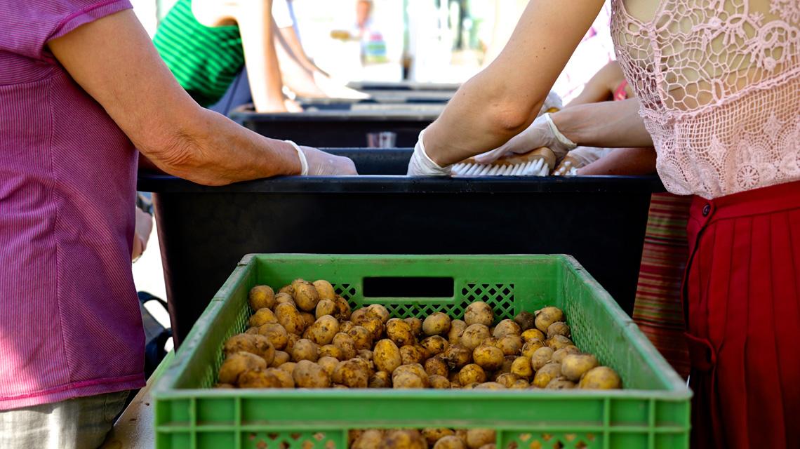1,5 Tonnen Gemüse wurde beim #Essensretterbrunch gerettet.