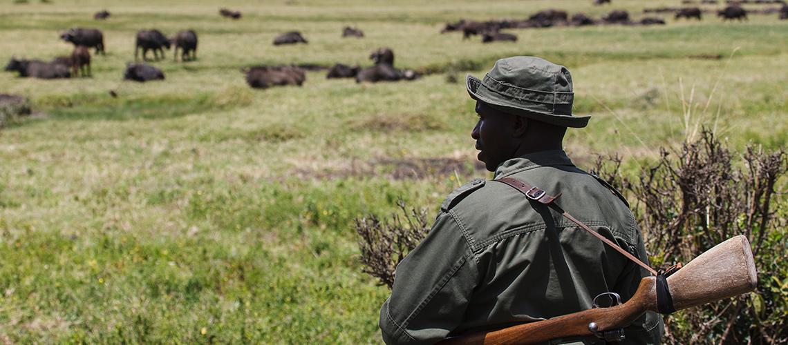 Ranger blickt in die Weite einer afrikanischen Landschaft, ein Gewehr über der Schulter.