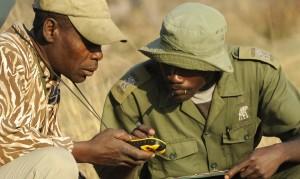 Zwei Wildhüter mit GPS-Gerät beim Fährtenlesen