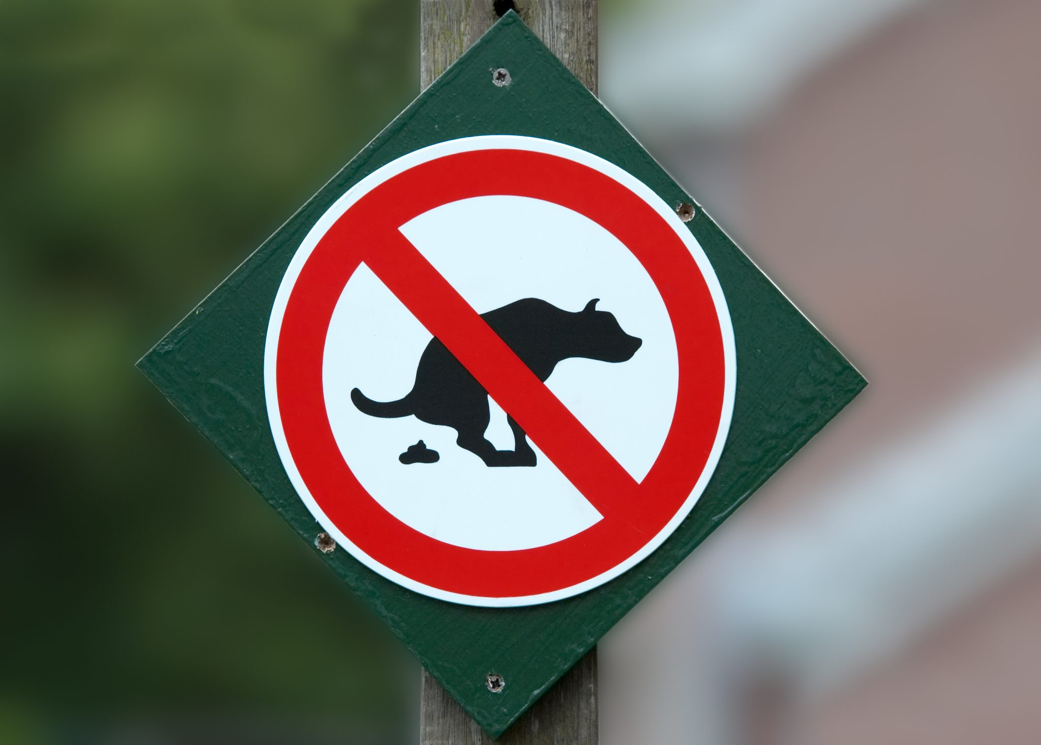 Lustiges Schild das symbolisch sagt, dass Hunde hier nicht hinmachen dürfen.
