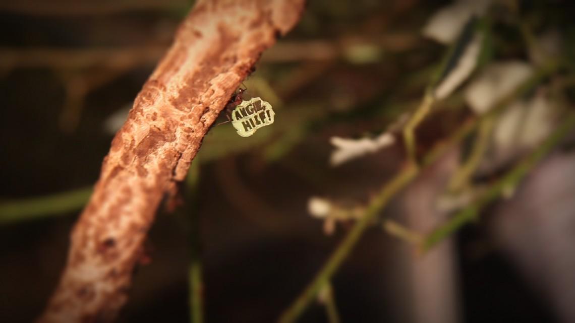 """Ameisendemo: Ameise trägt Blatt, aus dem ein Schriftzug ausgestanzt ist: """"Angie, hilf!"""""""