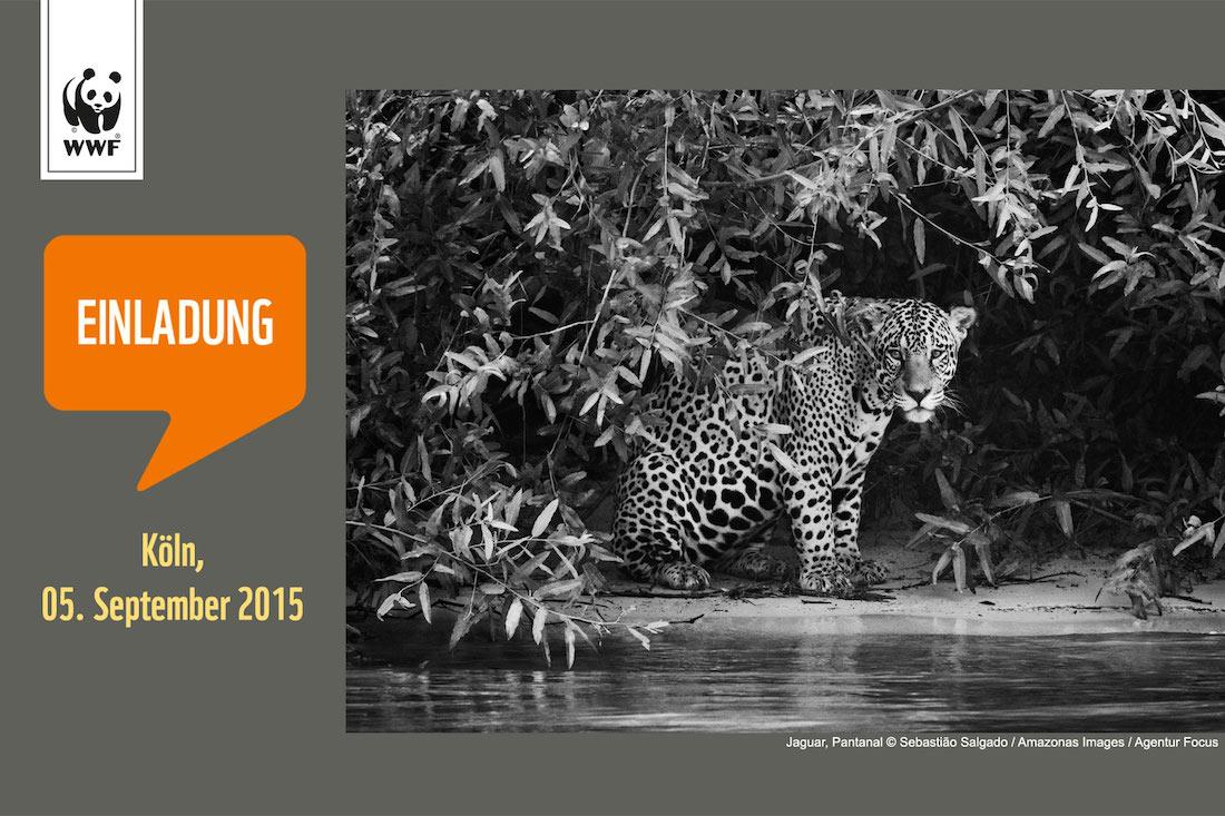 Ihr seid eingeladen: Zum Amazonas-Tag am 5. September 2015 in Köln