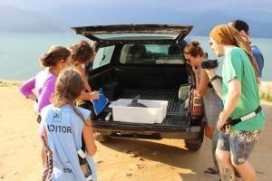 Schildkröten-Auswilderung in Ubatuba © Dirk Embert / WWF