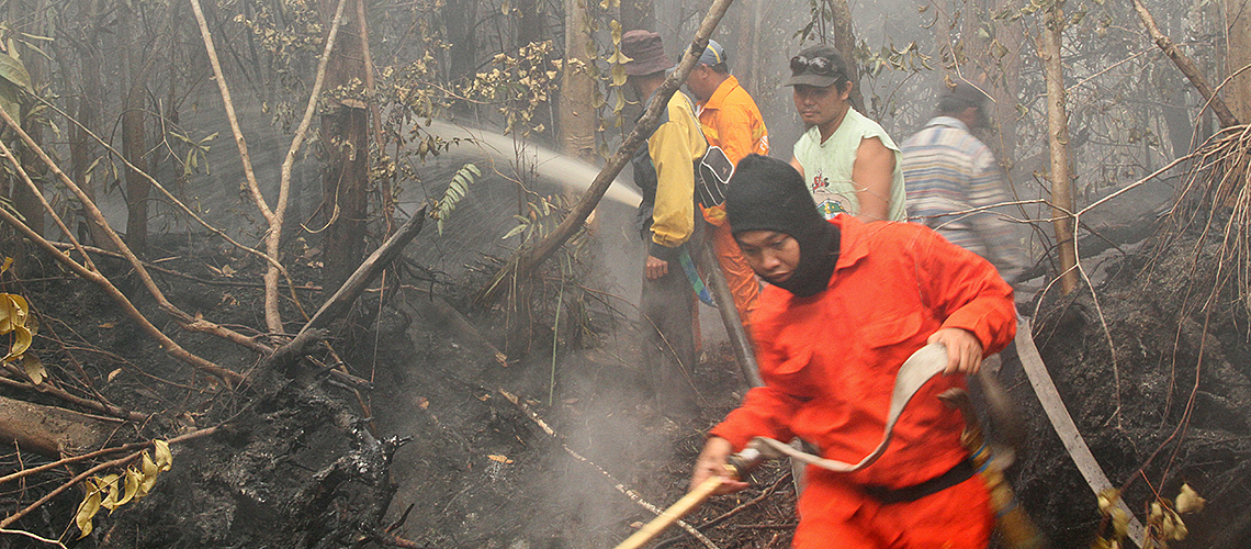 Feuer löschen unter schwierigsten Bedingungen © wwf Indones