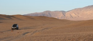Wüstenbildung im Nationalpark Khar Us Nuur in der Mongolei: Eine große Gefahr bei zu vielen Nutztieren auf karger Vegetation. © Oliver Samson, WWF