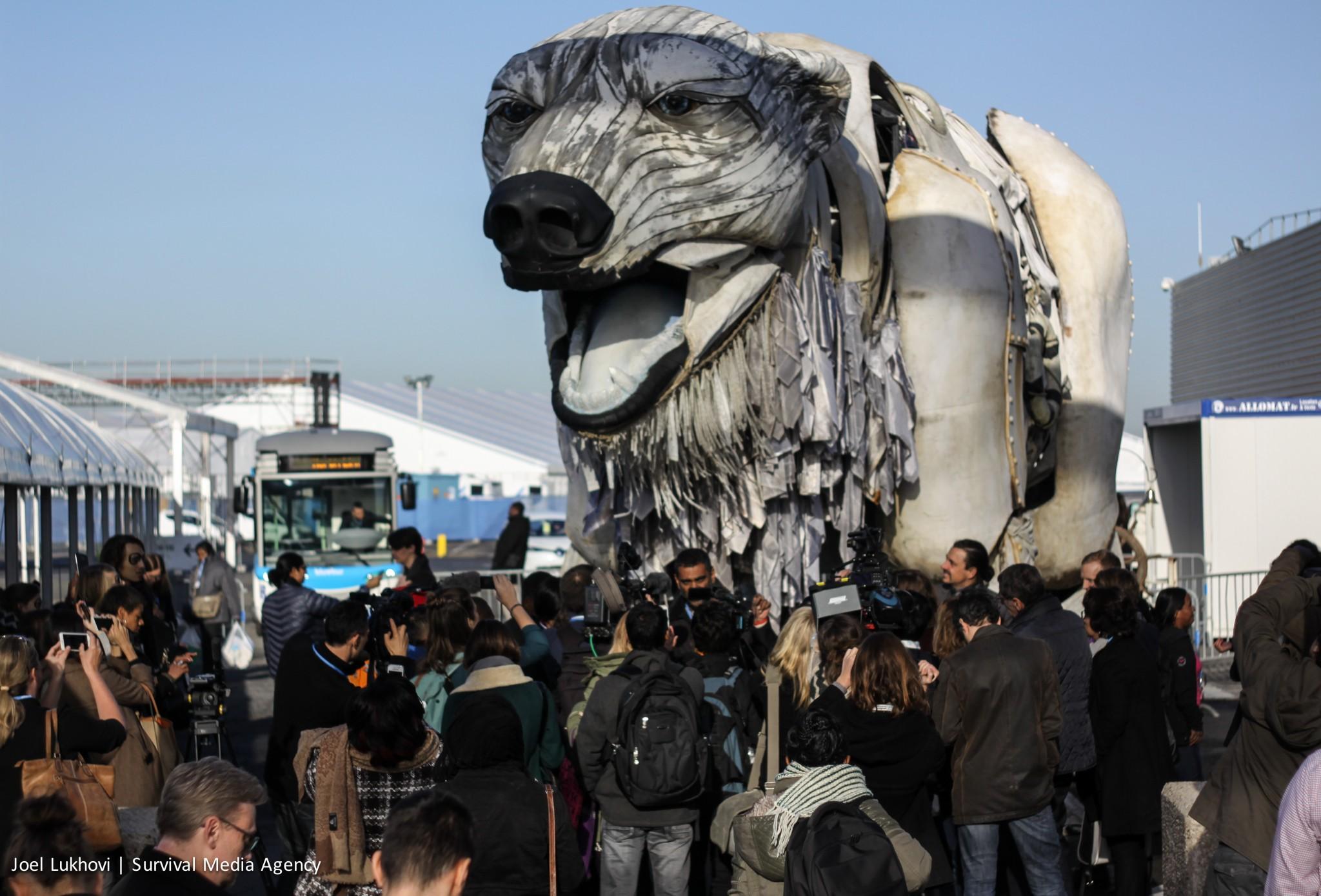 Das Symboltier des Klimawandels: Greenpeace-Eisbär auf der COP