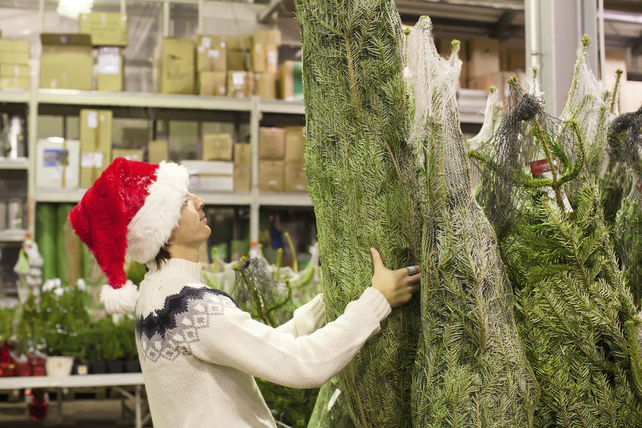 Weihnachtsbaum im Netz © iStock / Getty Images