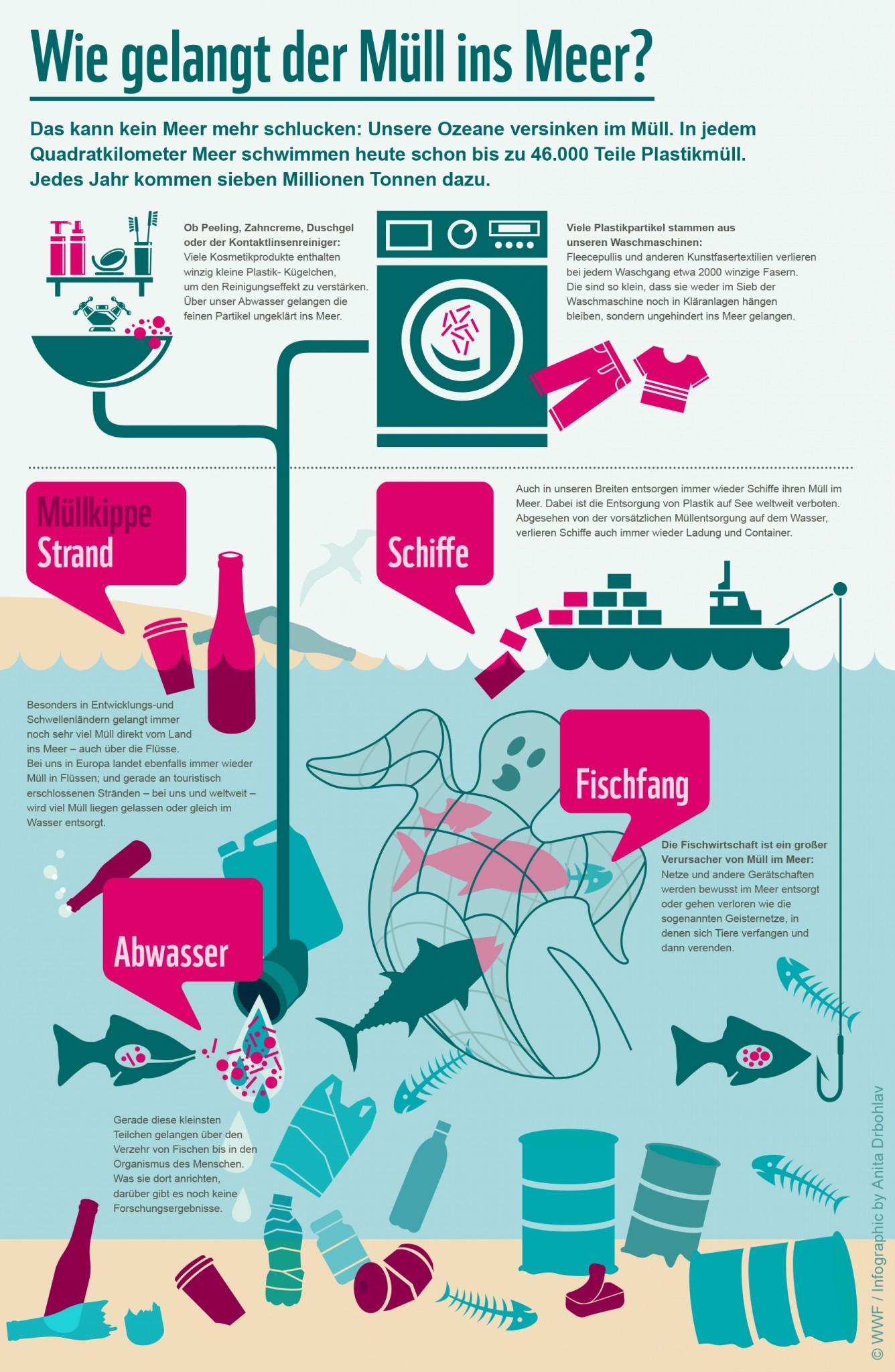 Wie kommt der Plastikmüll in die Meere?