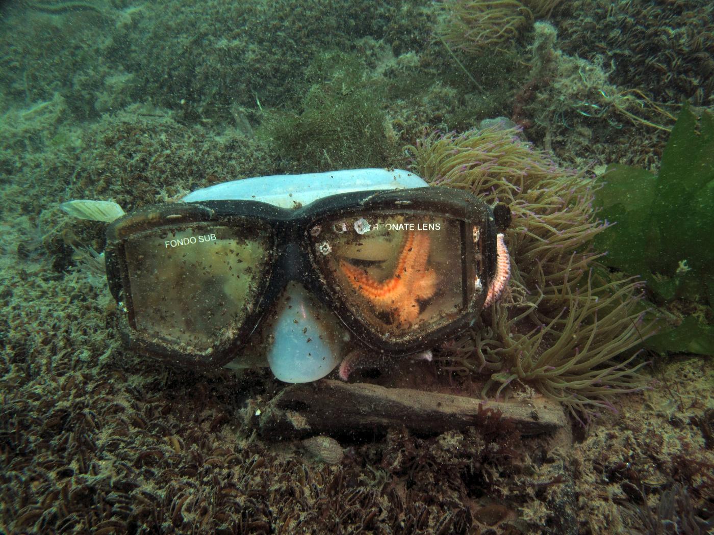 Taucherbrille am Meeresgrund als Müll im Meer