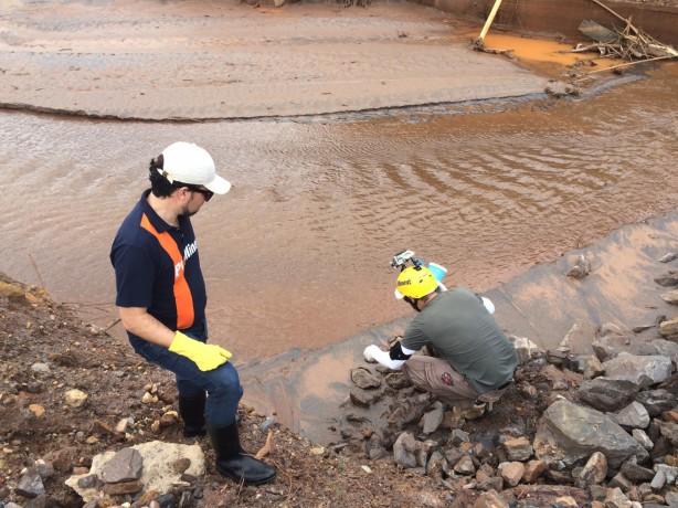 Unabhängige Untersuchung: Mitarbeiter der NGO SOS Mata Atlantica entnehmen Proben am brasilanischen Fluss Rio Doce