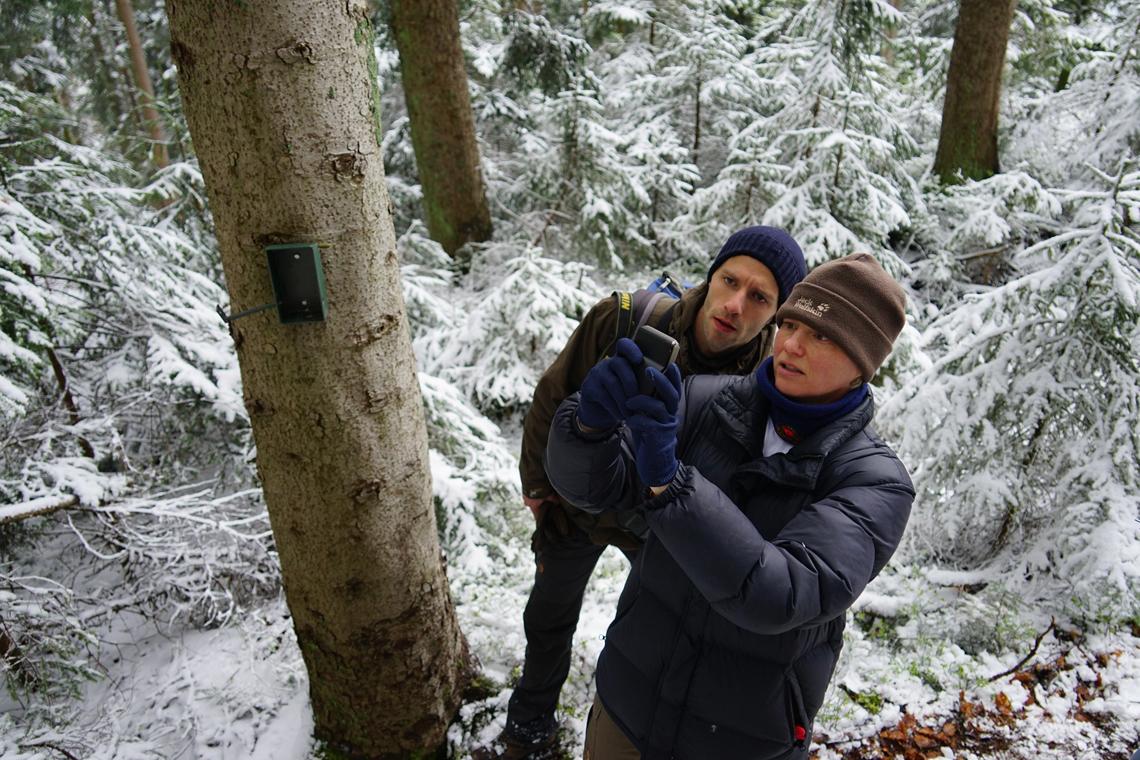 Biologin Sybille Wölfl und Moritz Klose vom WWF checken die Kamerafallenbilder