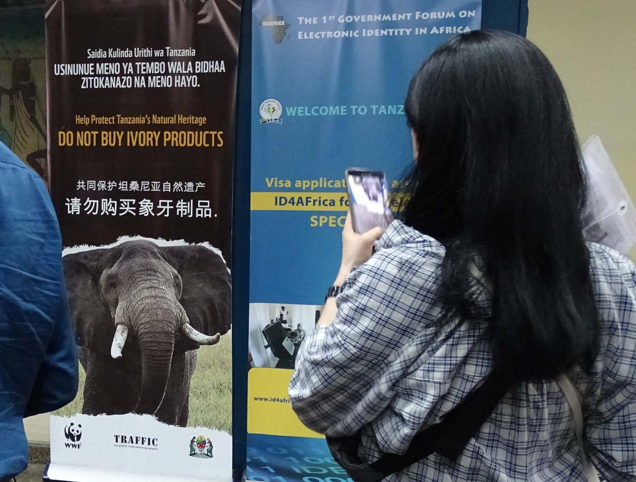 Don't buy Ivory Products - Anti-Wilderei-Kamapagne am Flughafen Daressalam