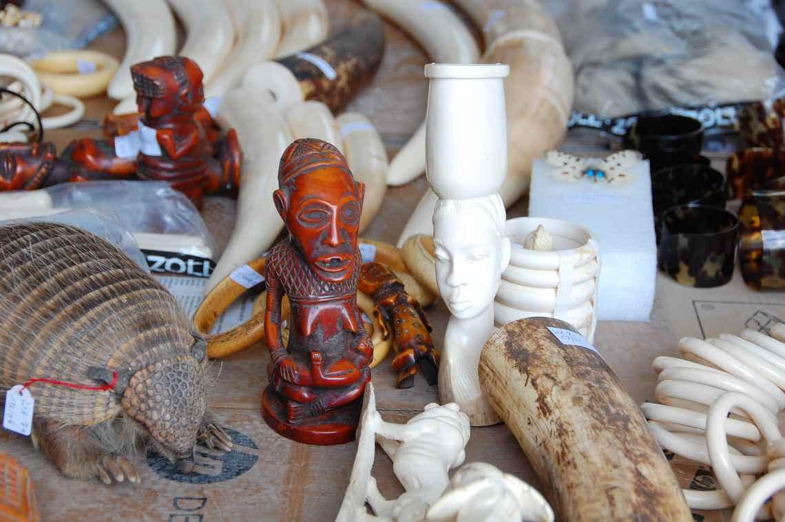 Konfiszierte Souvenirs aus Elfenbein in der Asservatenkammer des Zoll in Bad Hersfeld
