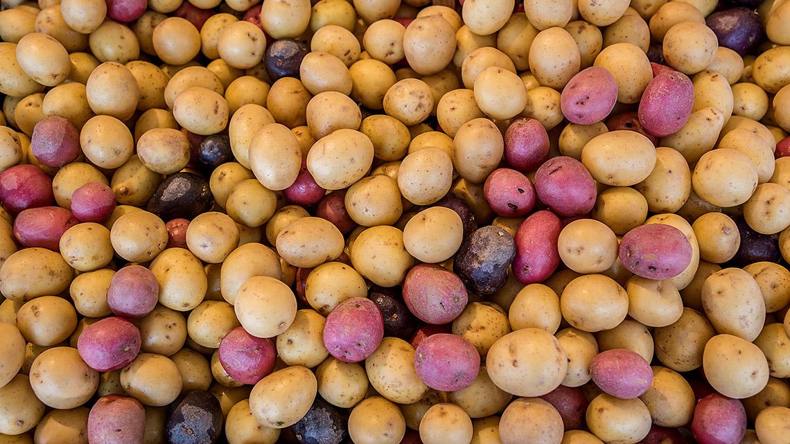 Ein Berg von Kartoffeln