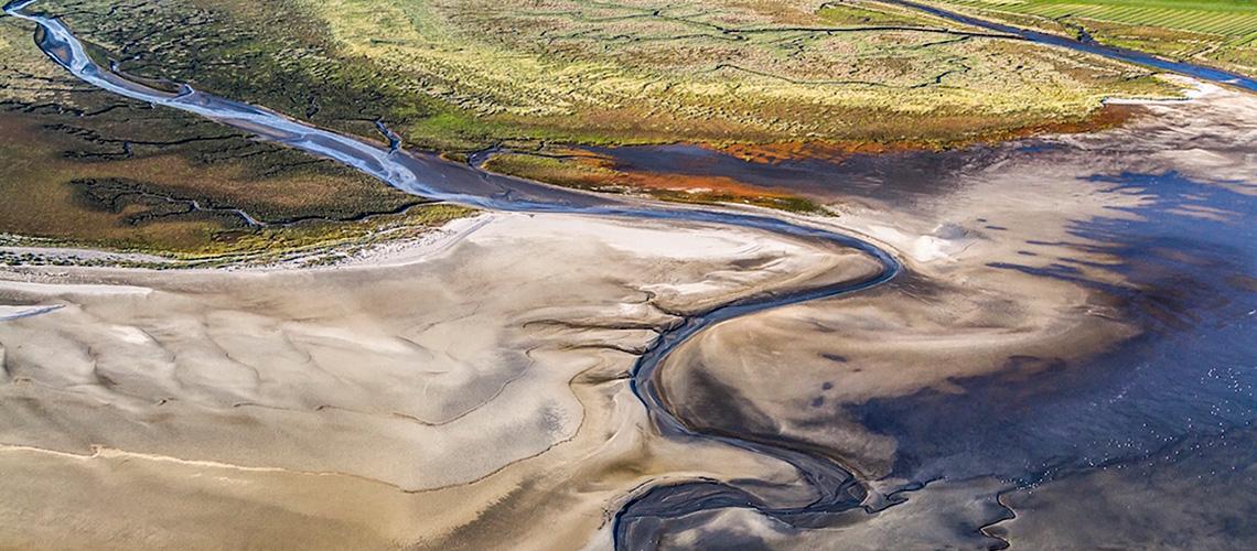 Die einmaligen Lebensräume des Wattenmeeres sind vom Klimawandel bedroht. Durch den Meeresspiegel-Anstieg droht das Watt dauerhaft zu versinken. Hier Watt und Salzwiesen vor St. Peter-Ording.