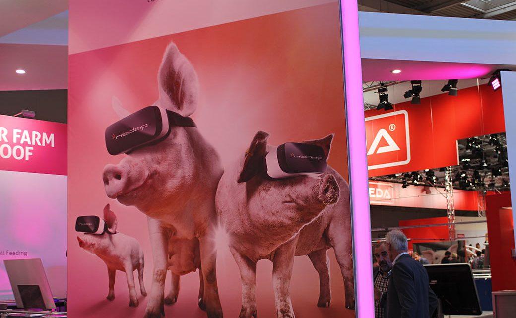 Kein Witz: Der Trend geht zu virtual Reality für Schweine - damit sie das Elend nicht mehr sehen müssen. © Markus Wolter / WWF