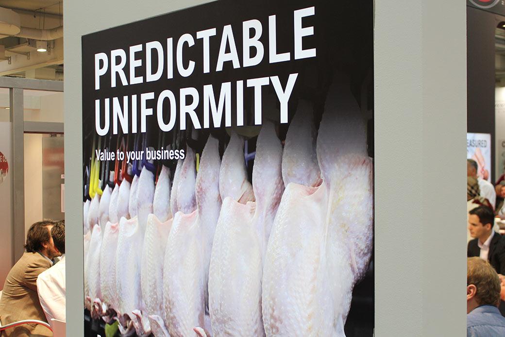 Ein Tierart, eine Form: Uniformität ist ein Qualitätsmerkmal © Markus Wolter / WWF