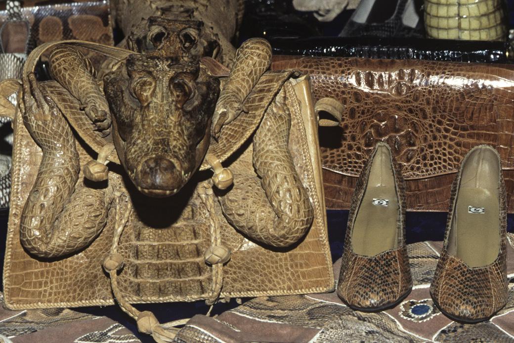 Taschen und Schuhe aus Reptilienhaut: Die falschen Souvenirs befeuern ein Mordgeschäft, sind illegal und gefährden Arten! Aufklärung bietet der WWF Souvenir-Ratgeber.