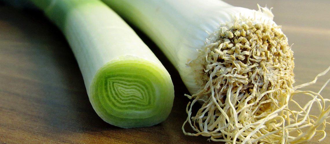 Lauch und Poree sind exakt das gleiche: Köstlich gesundes saisonales Wintergemüse mit vielen Vitaminen