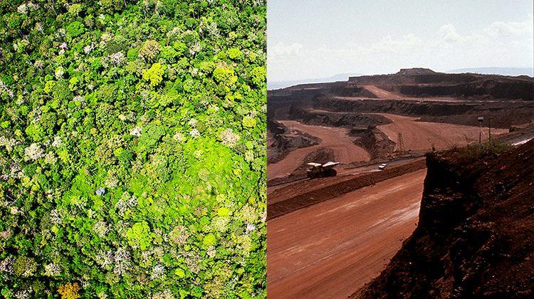 Amazonas regenwald gespiegelt mit bergbau