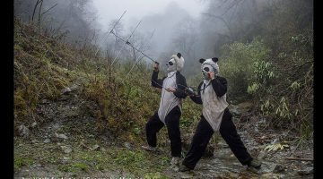 Wo bist du, kleiner Panda? .© Ami Vitale/ National Geographic Magazine/World Press Photo