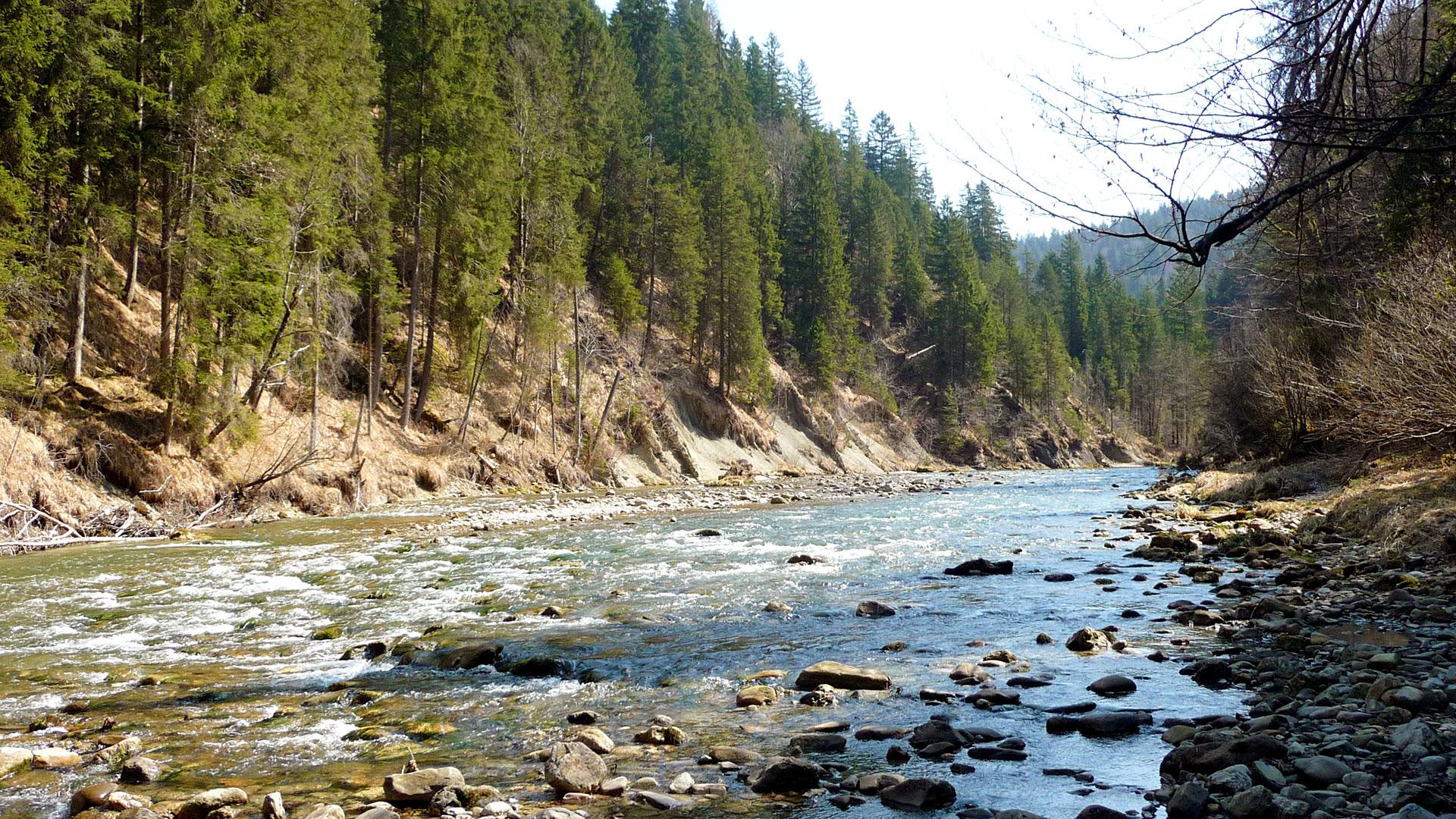 Wildfluss in steilen Schluchten: Die wertvolle Natur, die der WWF in Deutschland schützt, ist natürlich auch sehenswert als Ausflugstipp und Reiseziel.