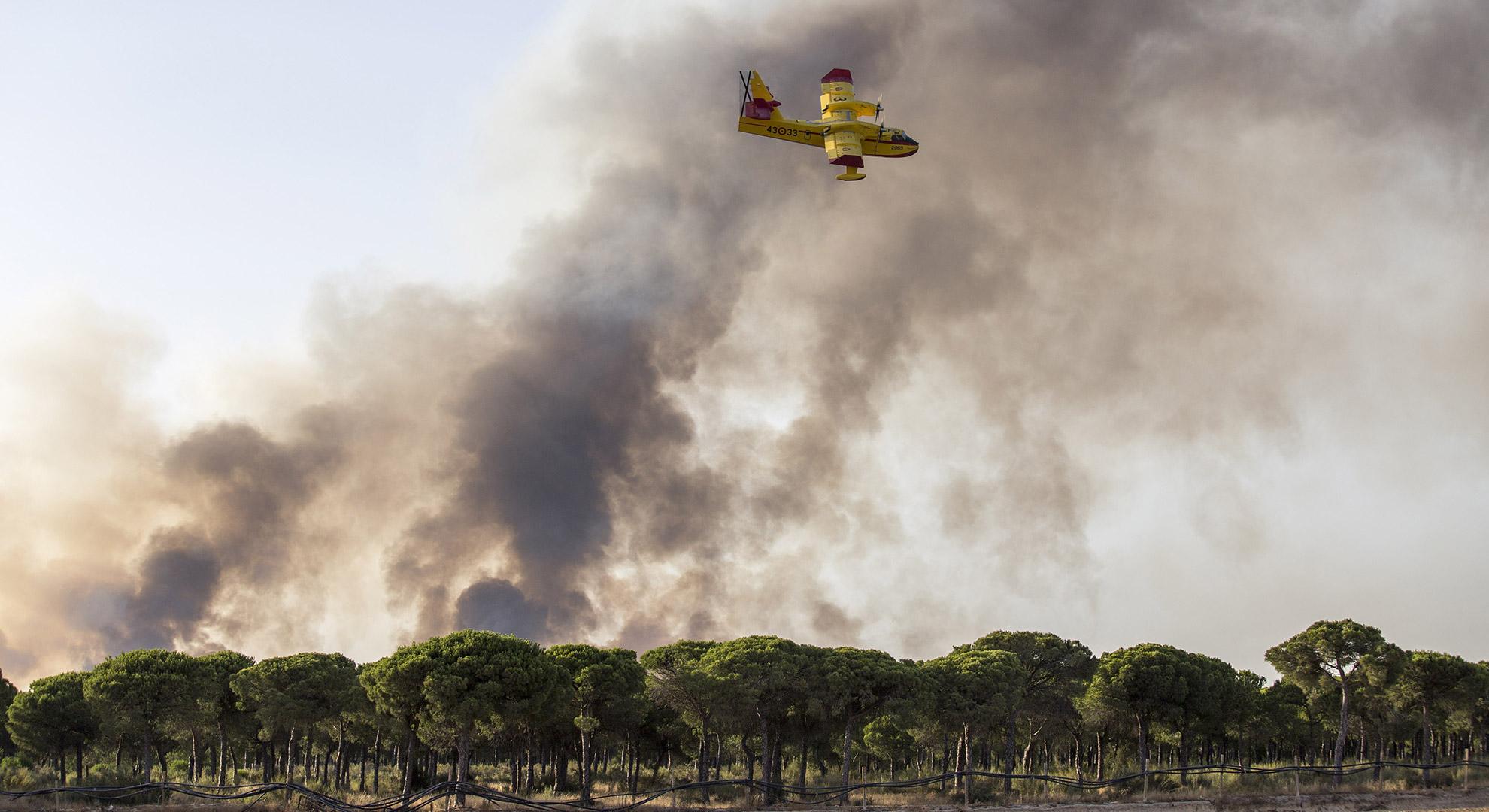 Waldbrand Doñana: Wieder einmal wüteten in Spaniens Welterbe Doñana heftige Waldbrände. © picture alliance / AP Photo / Alberto Diaz