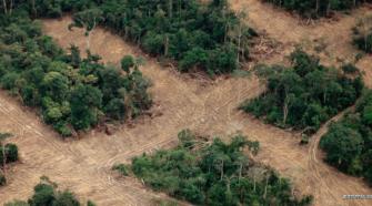 Derzeit sieht es nicht gut aus um den Amazonas © WWF / Staffan Widstrand