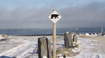 Churchill ist die Hauptstadt der Eisbären © Melanie Gömmel / WWF