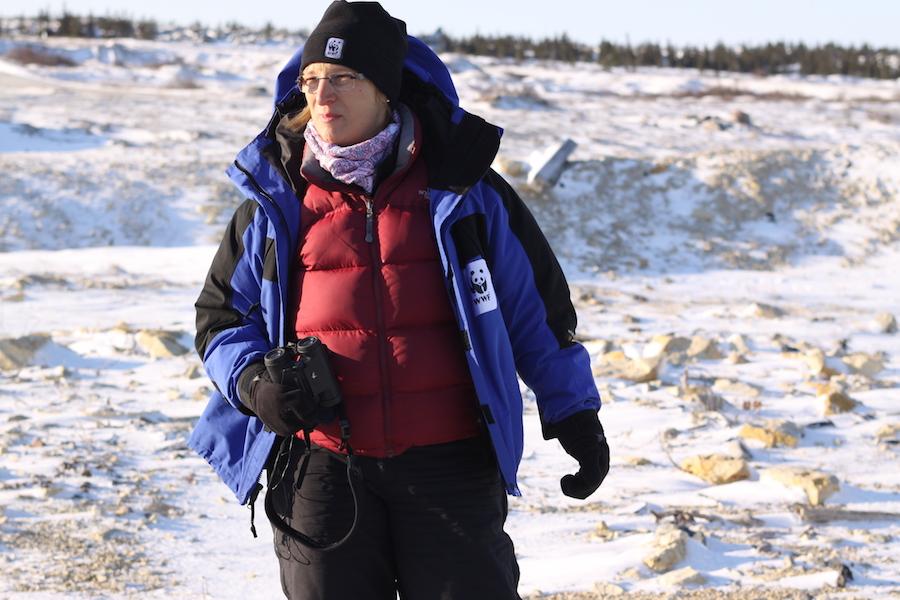 Die WWF-Eisbären-Expertin Sybille Klenzendorf ist voll in ihrem Element © Melanie Gömmel / WWF