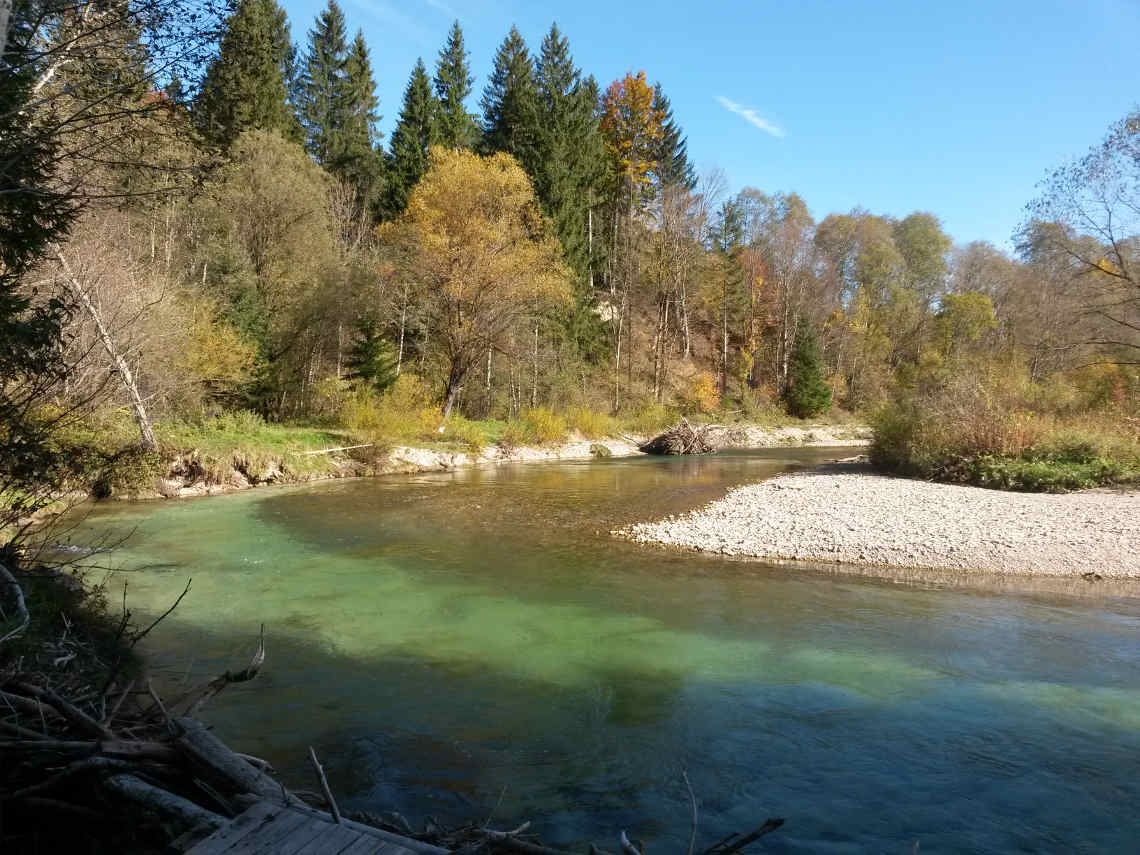 Ammer Schleife bei Altenau