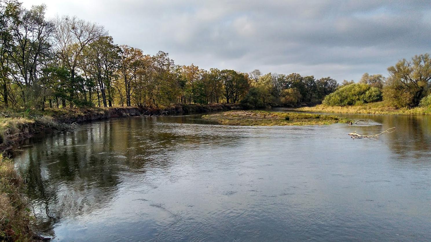 Elbe: Der Zufluss Mulde bei Dessau