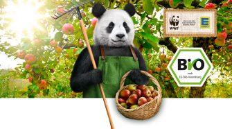 Edeka und der Panda Plakat