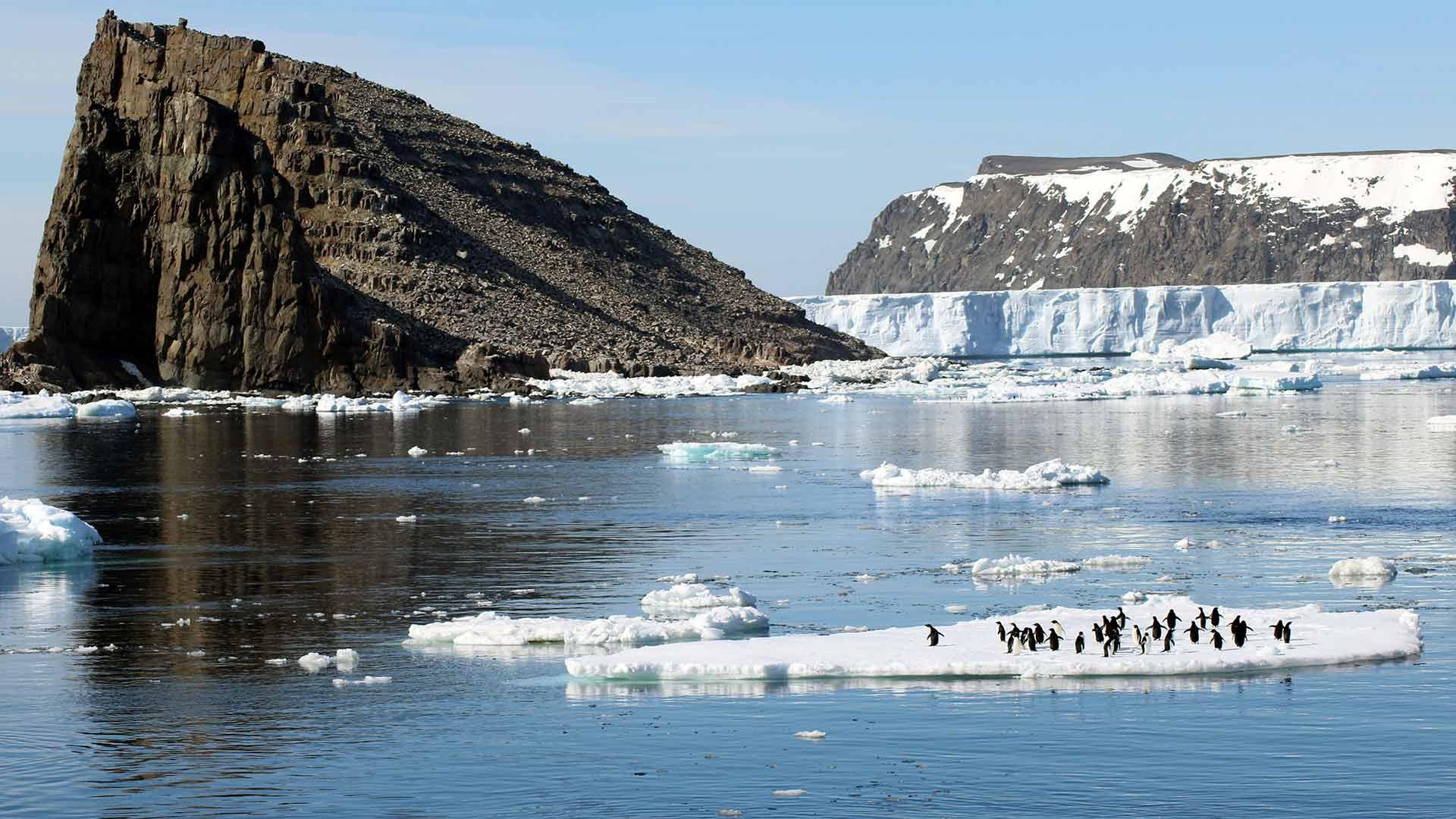 Danger Island in der Antarktis mit Pinguinen