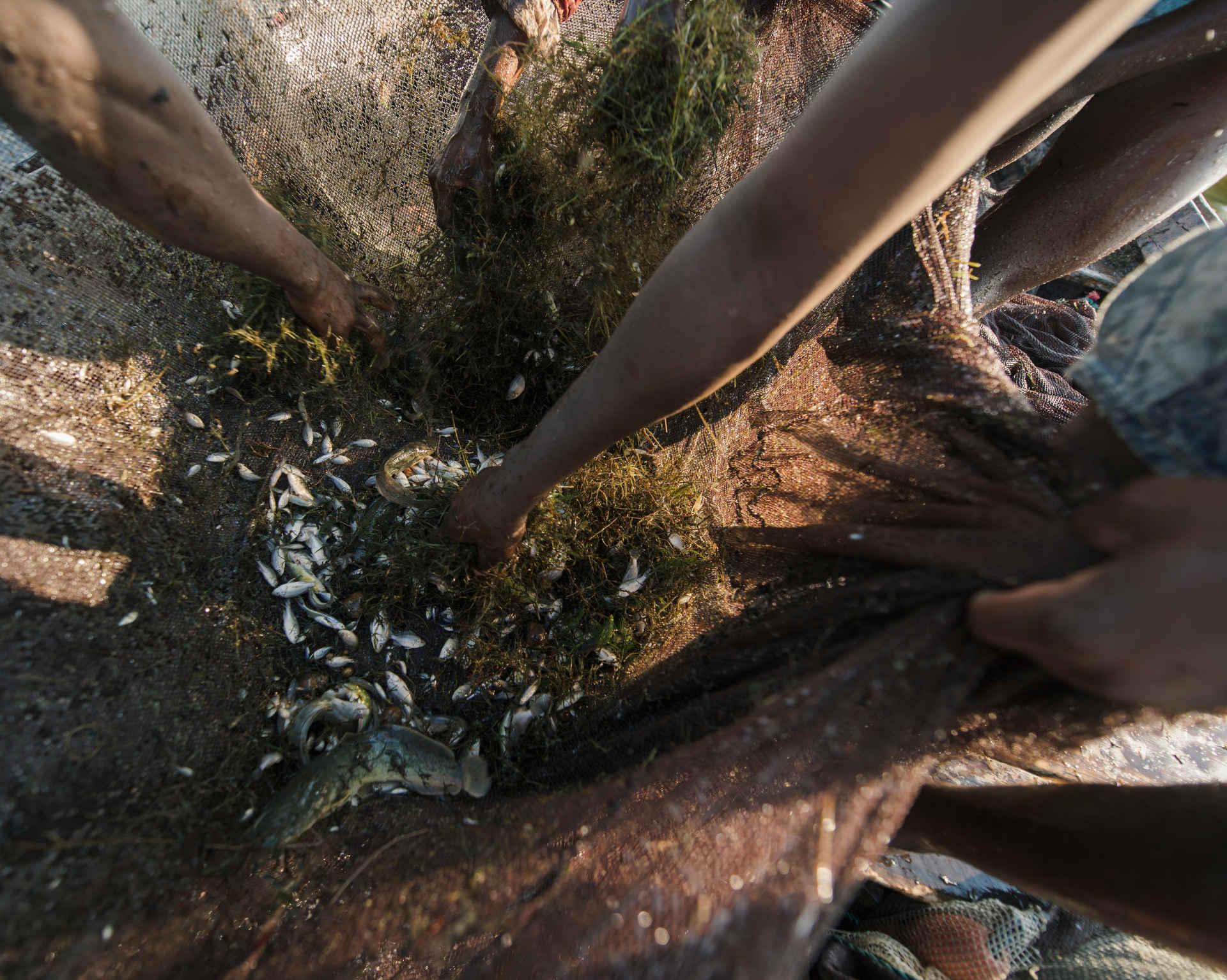 Fischfang mit extrem engmaschigem Netz in Mozaqmbique
