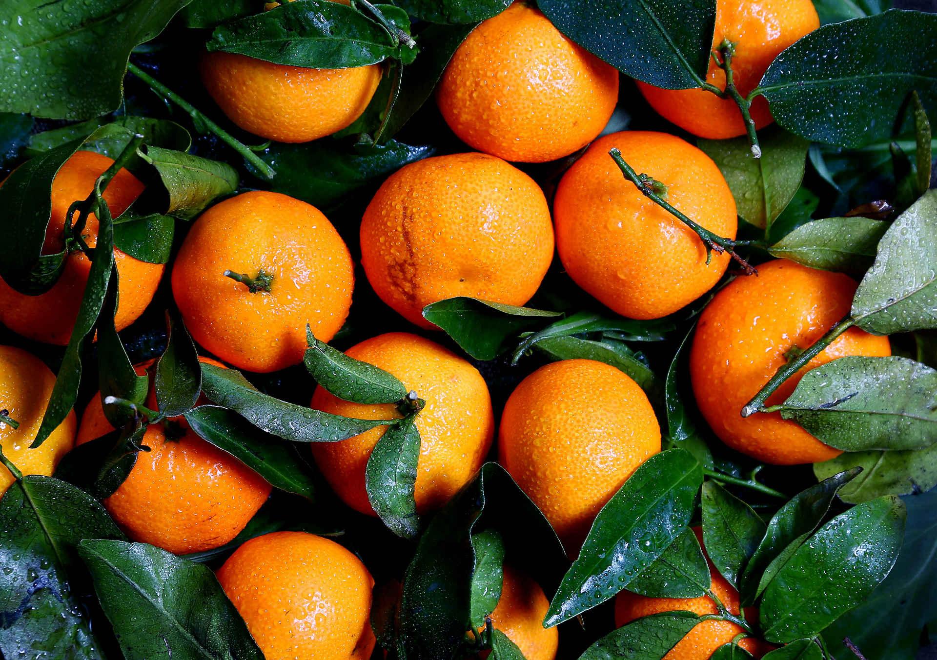Wieviel Wasser braucht eine Orange, bis sie im Supermarkt liegt?