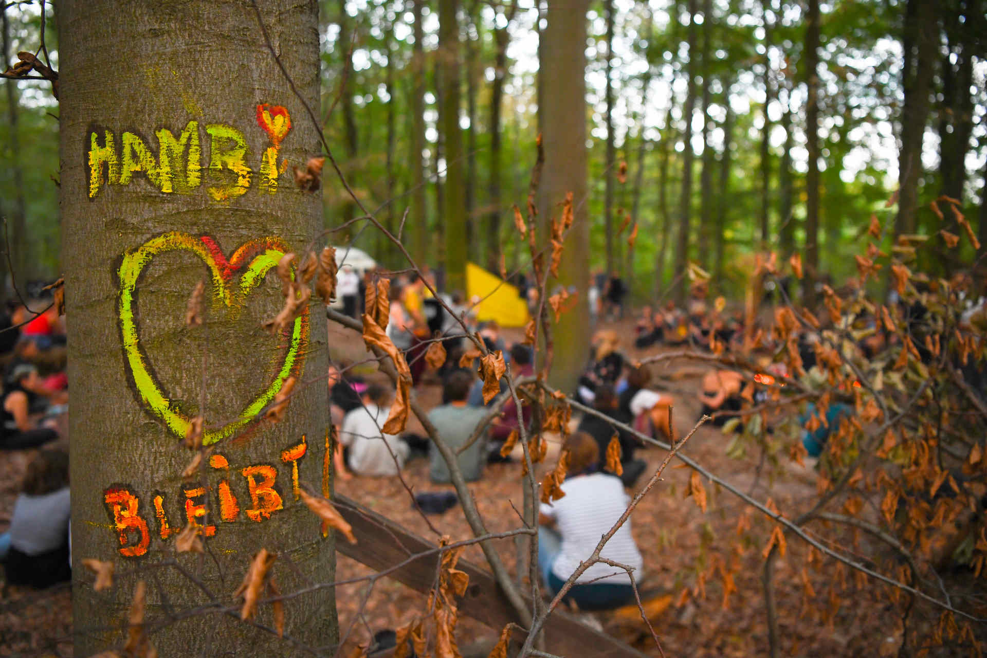 hambacher wald demonstration