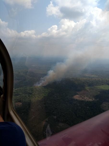 Brasilien und Klimawandel: Luftbild von brennendem Amazonas