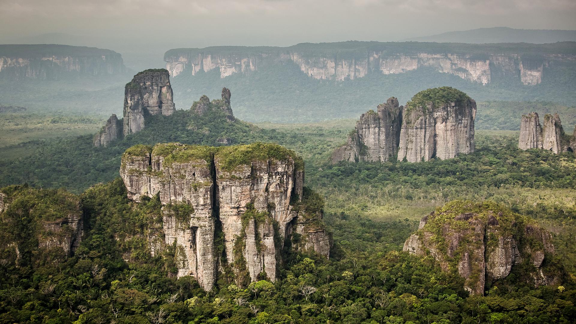 Mit der Orinoco-Savanne, den Anden, dem Bergland von Guayana und dem Amazonas werden vier unterschiedliche Ökosysteme zum Naturschutzgebiet Serrania del Chiribiquete miteinander verbunden. © David Martinez / WWF