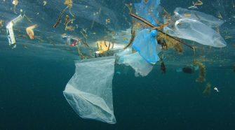 Wir müssen die Plastikflut in die Ozeanen beenden! © Shutterstock / Rich Carey / WWF