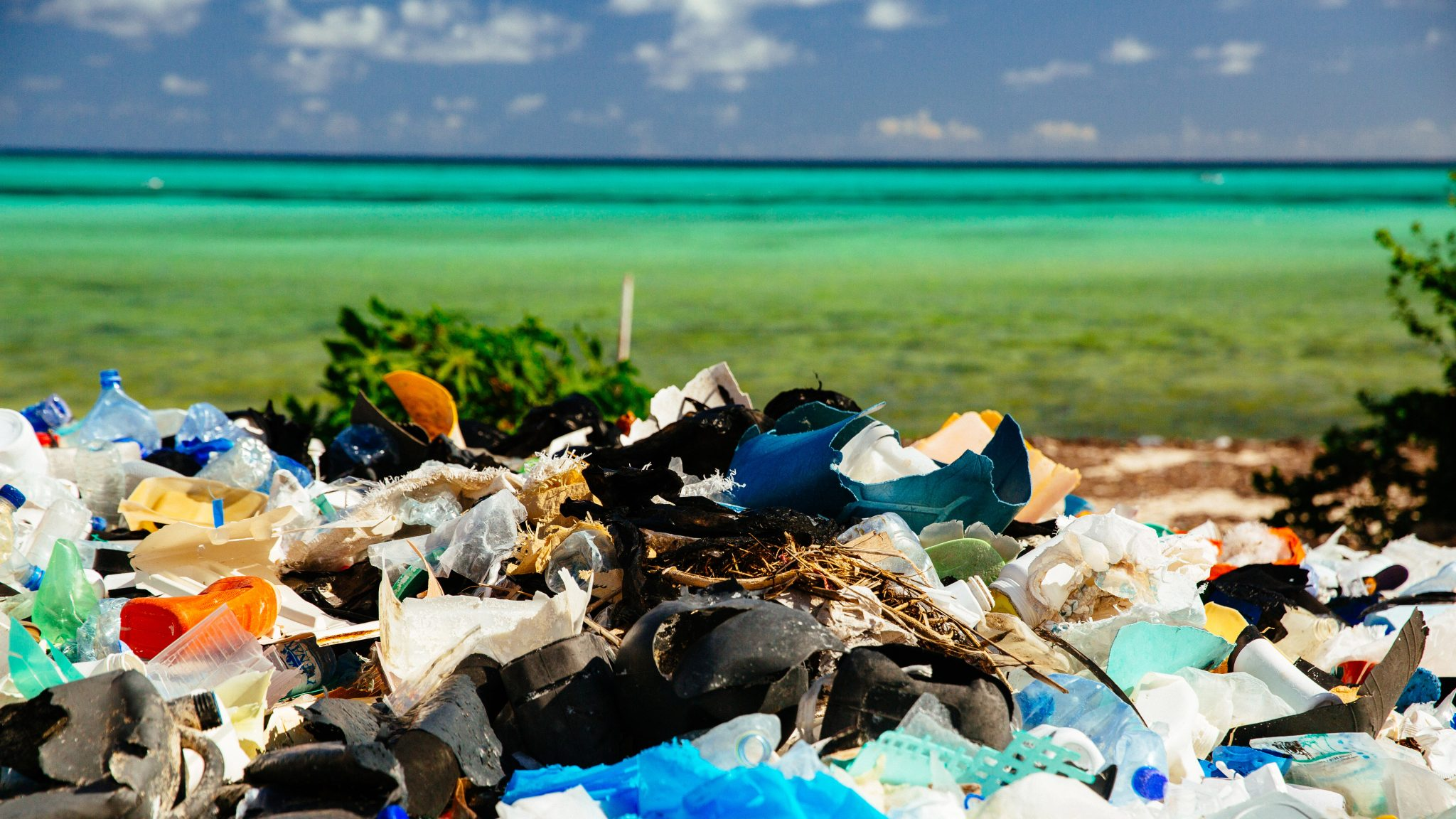 Im schlimmsten Fall landen die Verpackungen unrecycelt auf dem Müll. © Greg Armfield/WWF-UK