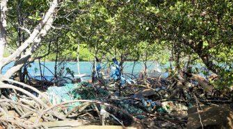 Plastikmüll Vietnam: Fischernetze, die sich in den Wurzeln der Mangroven am Nordstrand von Hon Bai Canh (Con Dao, Vietnam) verfangen haben.