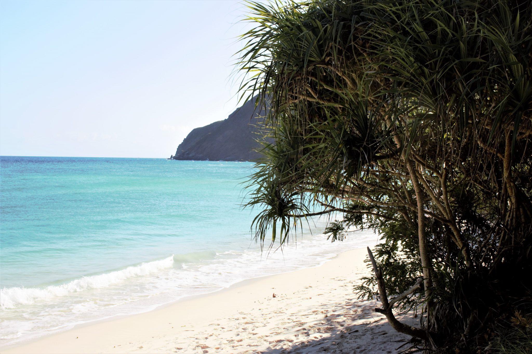 Plastikmüll in Vietnam: Paradisicher Strand auf Hon Bai