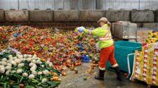 Lebensmittelverschwendung Halle: Frau schüttet weg