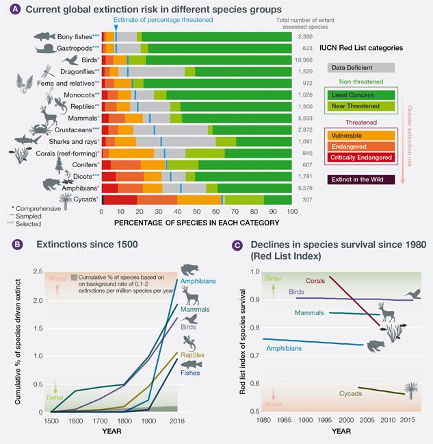 IpBes Statitisdken zum Aussterben von Tieren und Pflanzen