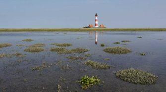 Welterbe Wattenmeer: leuchtturm bei Westerhever